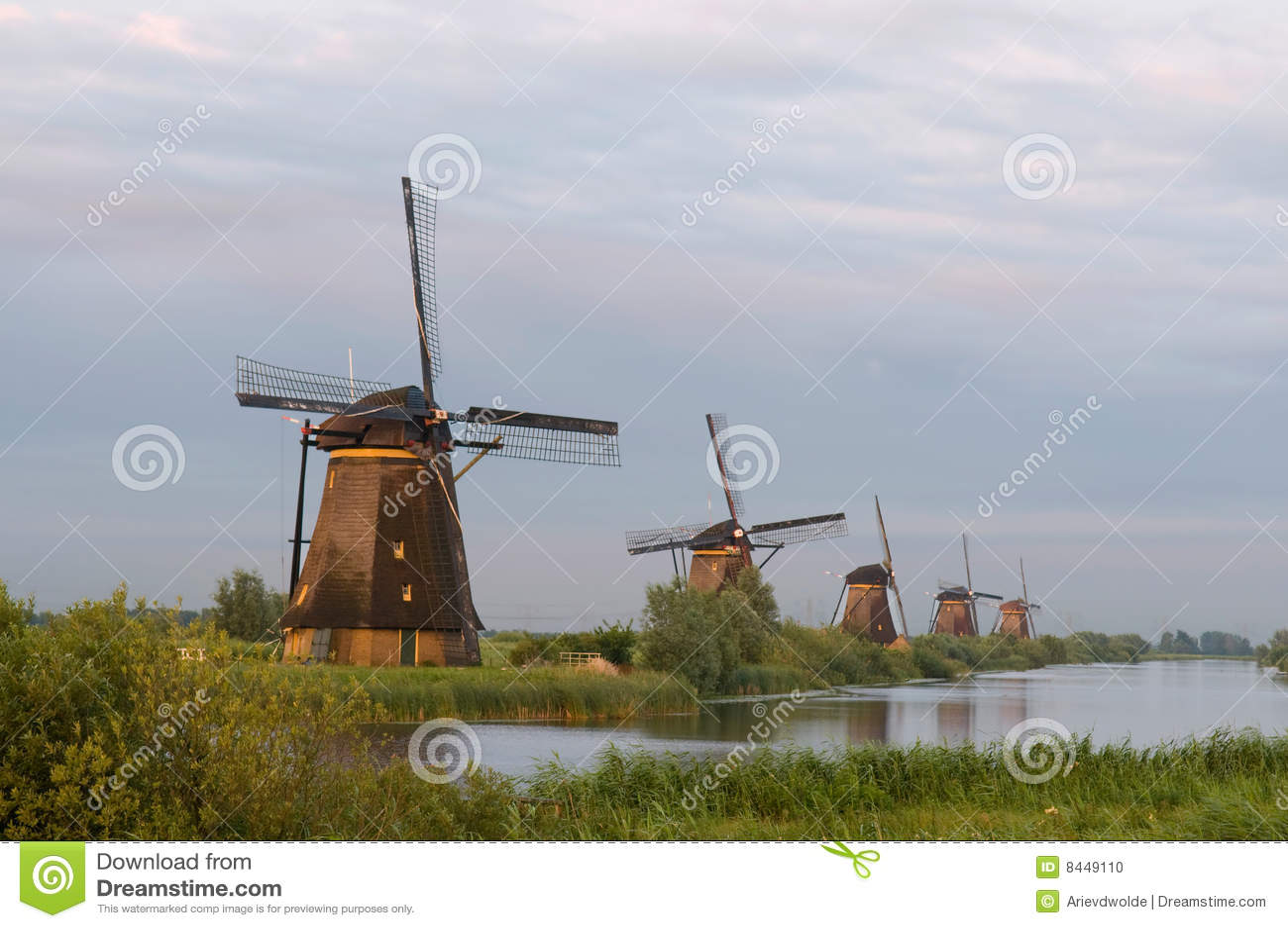 Windmills in evening sun