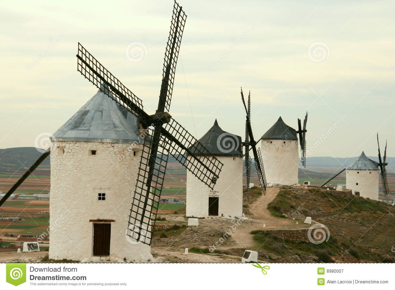 Windmills lined up