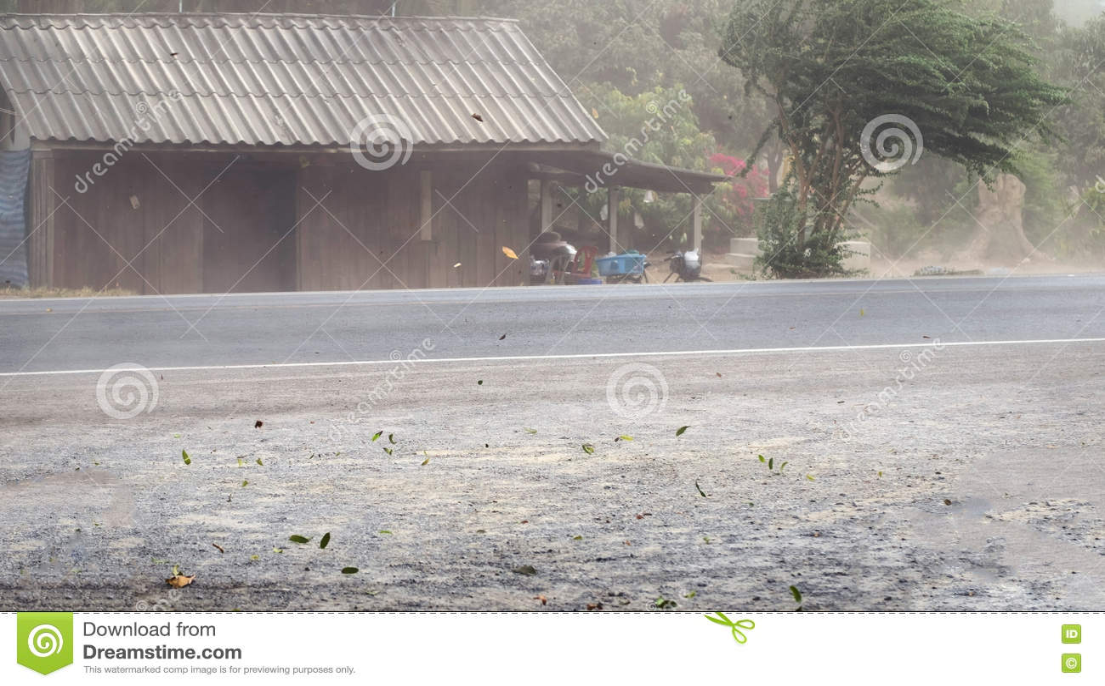 Windonweer geblazen stof en bladeren op weg