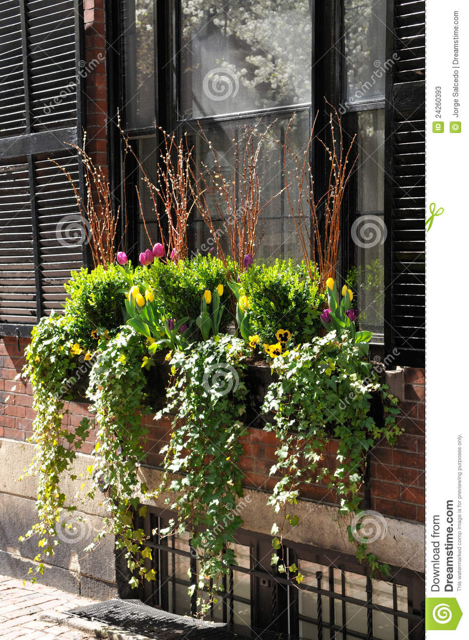 Window box flower arrangement stock photos image 24260393 for Agencement container