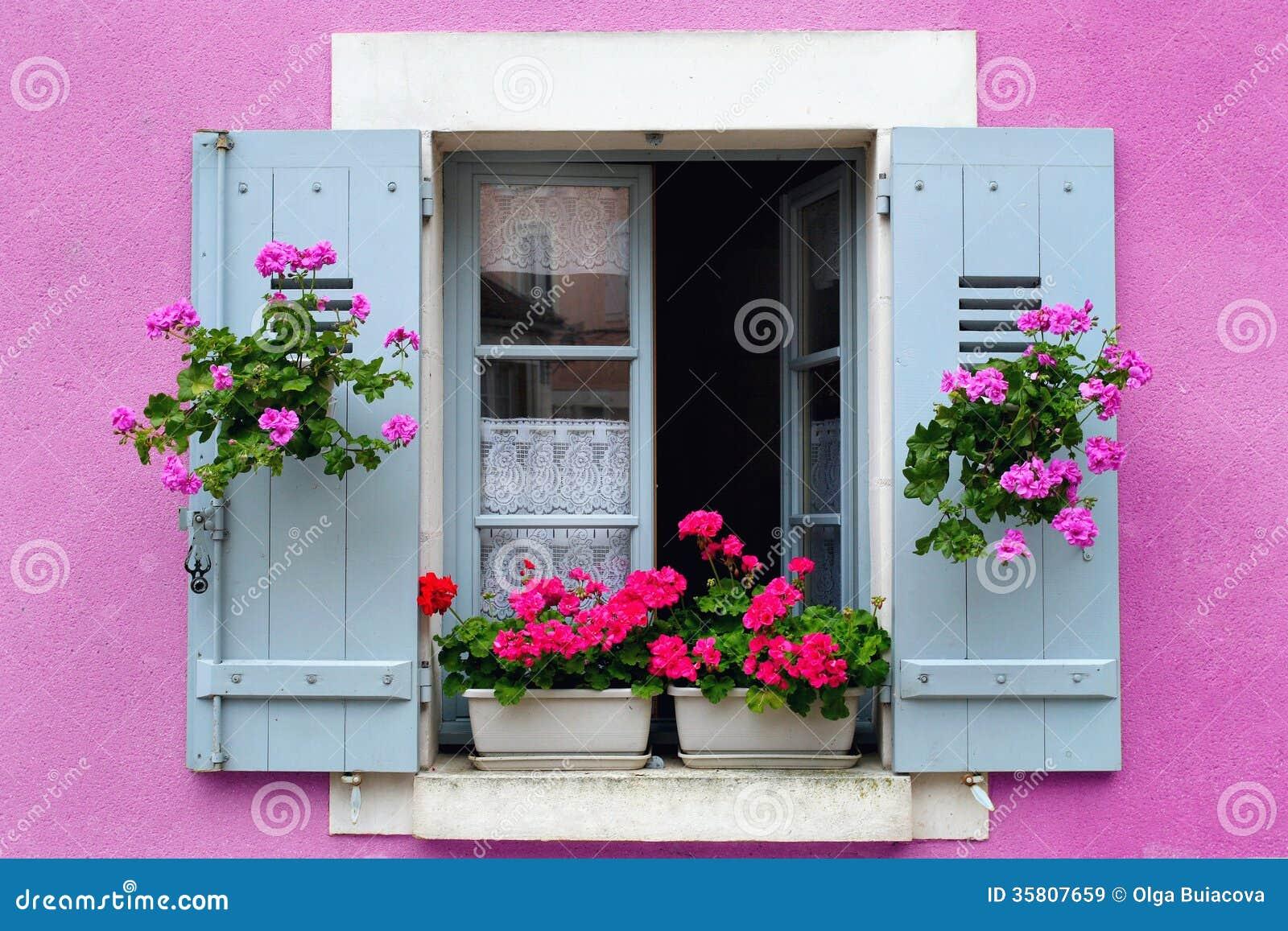 Цветы на окнах с улицы