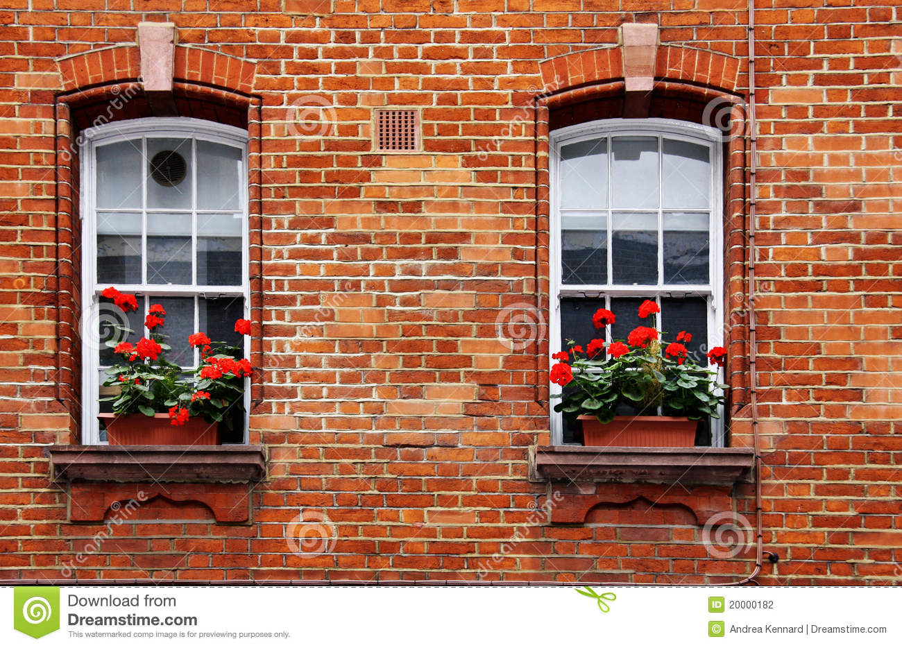Window Boxes Stock Photo Image Of Floral Frame