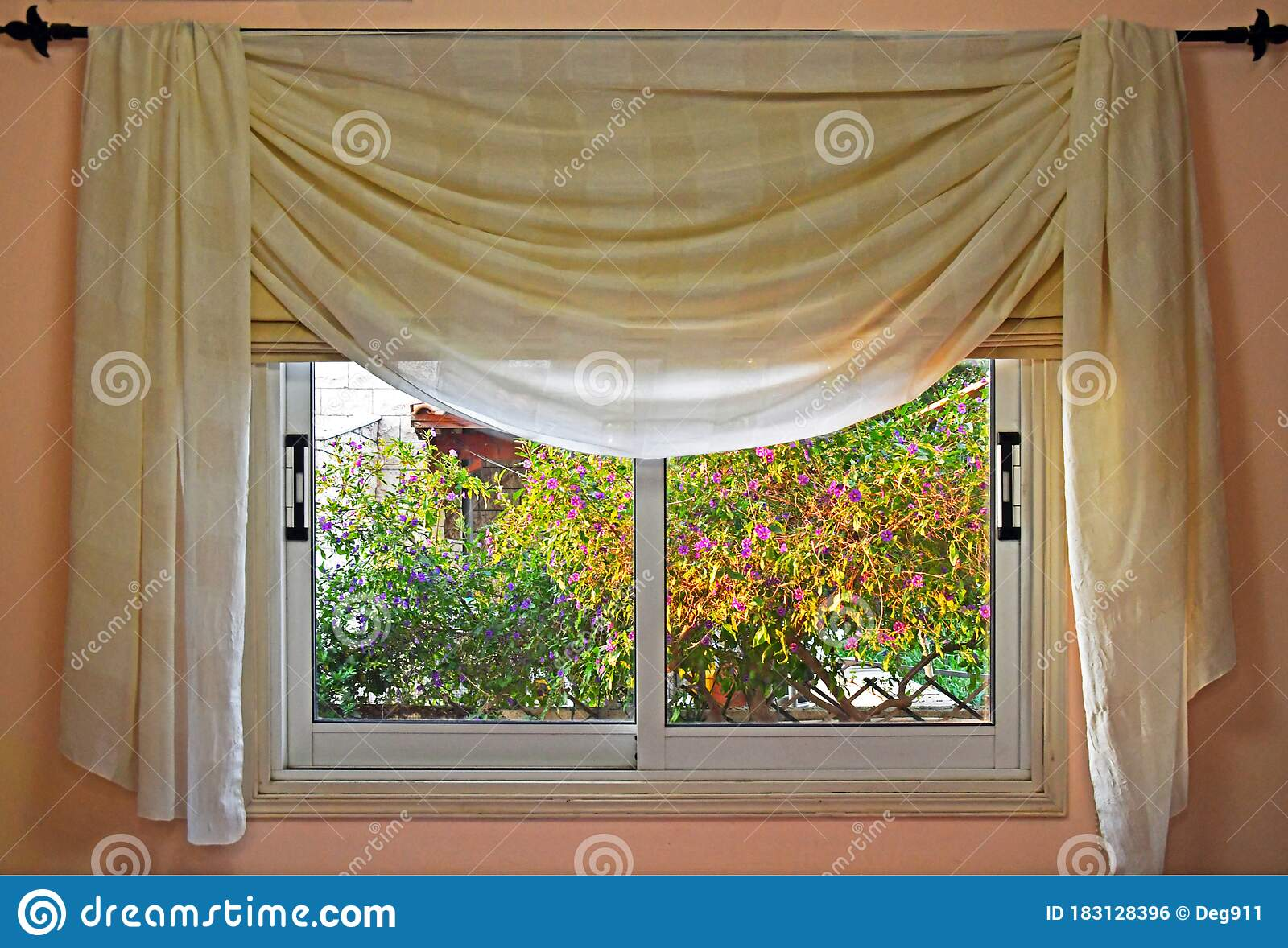 Window Curtain And Tree Golden Hour Stock Photo Image Of Nature Colorful 183128396
