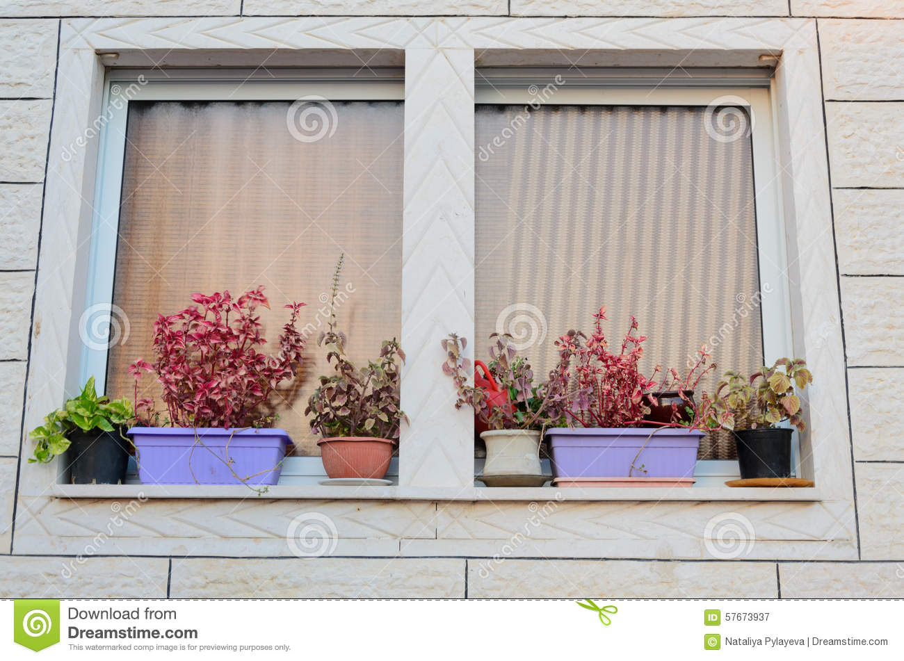 100 window with curtains window clipart outside snowjet co