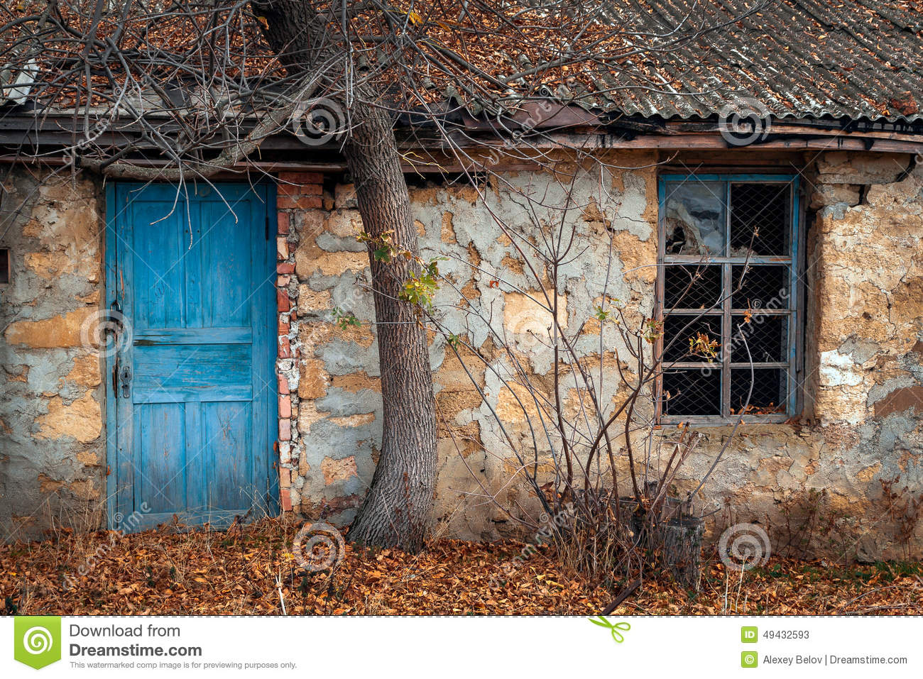 Window And Door Of The Old House Under The Tree Stock