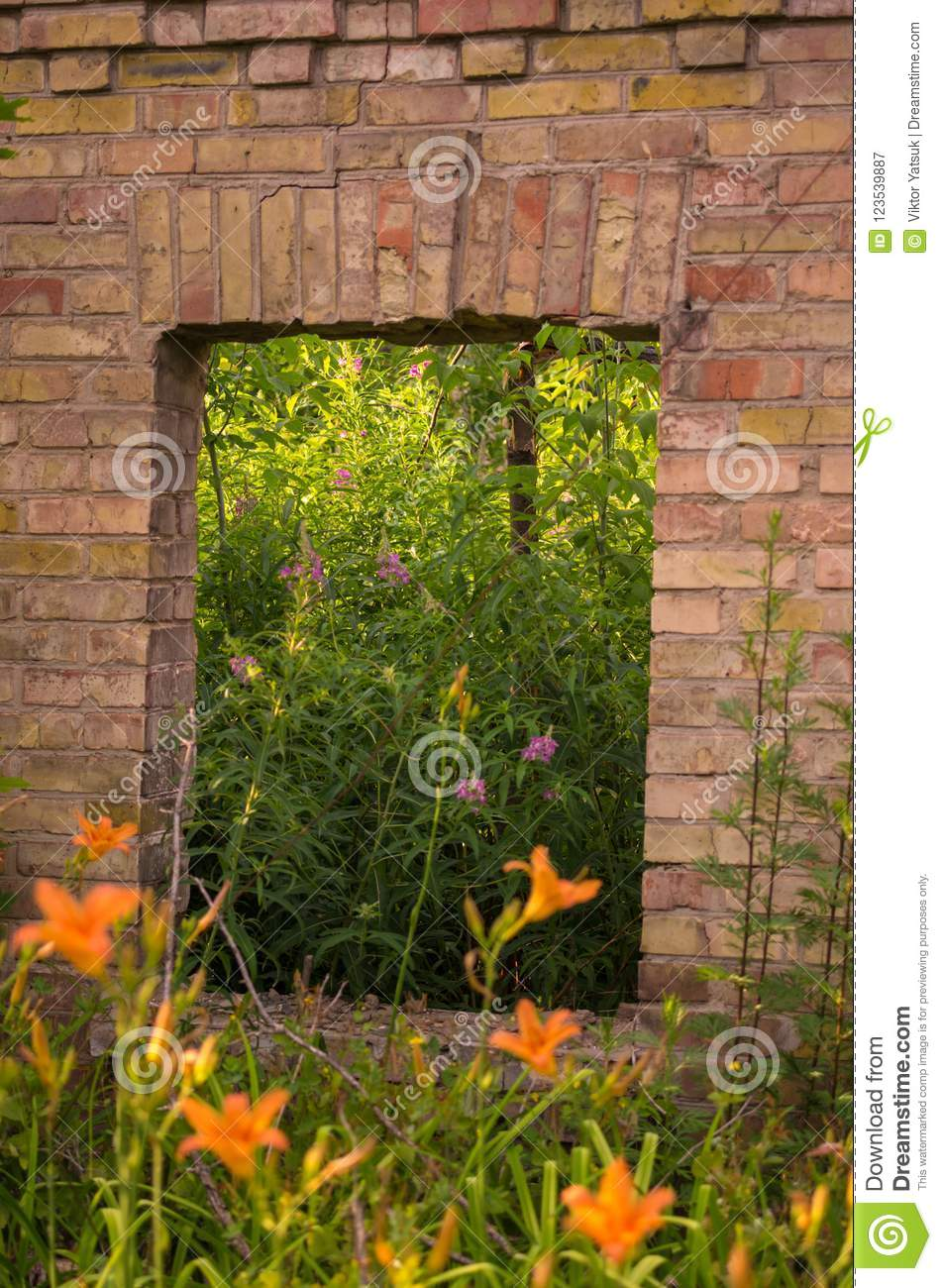 Window with flowers. A window into nature.