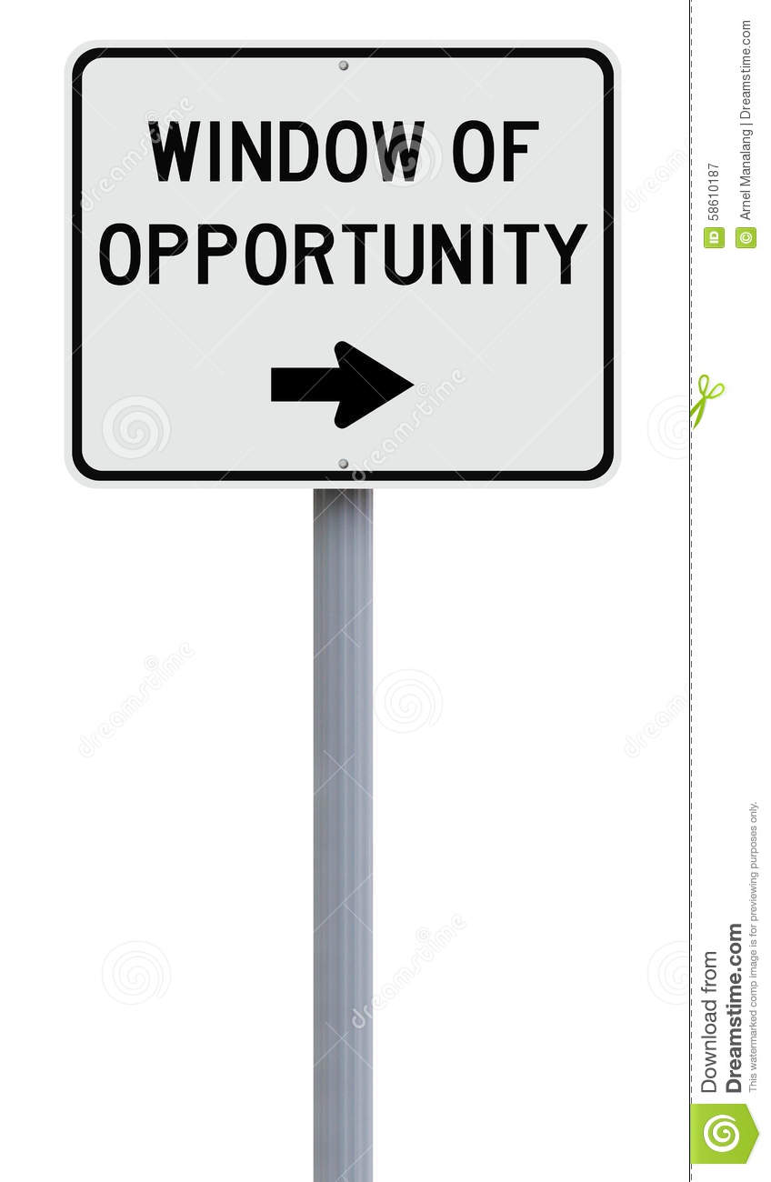 Window of opportunity business plan