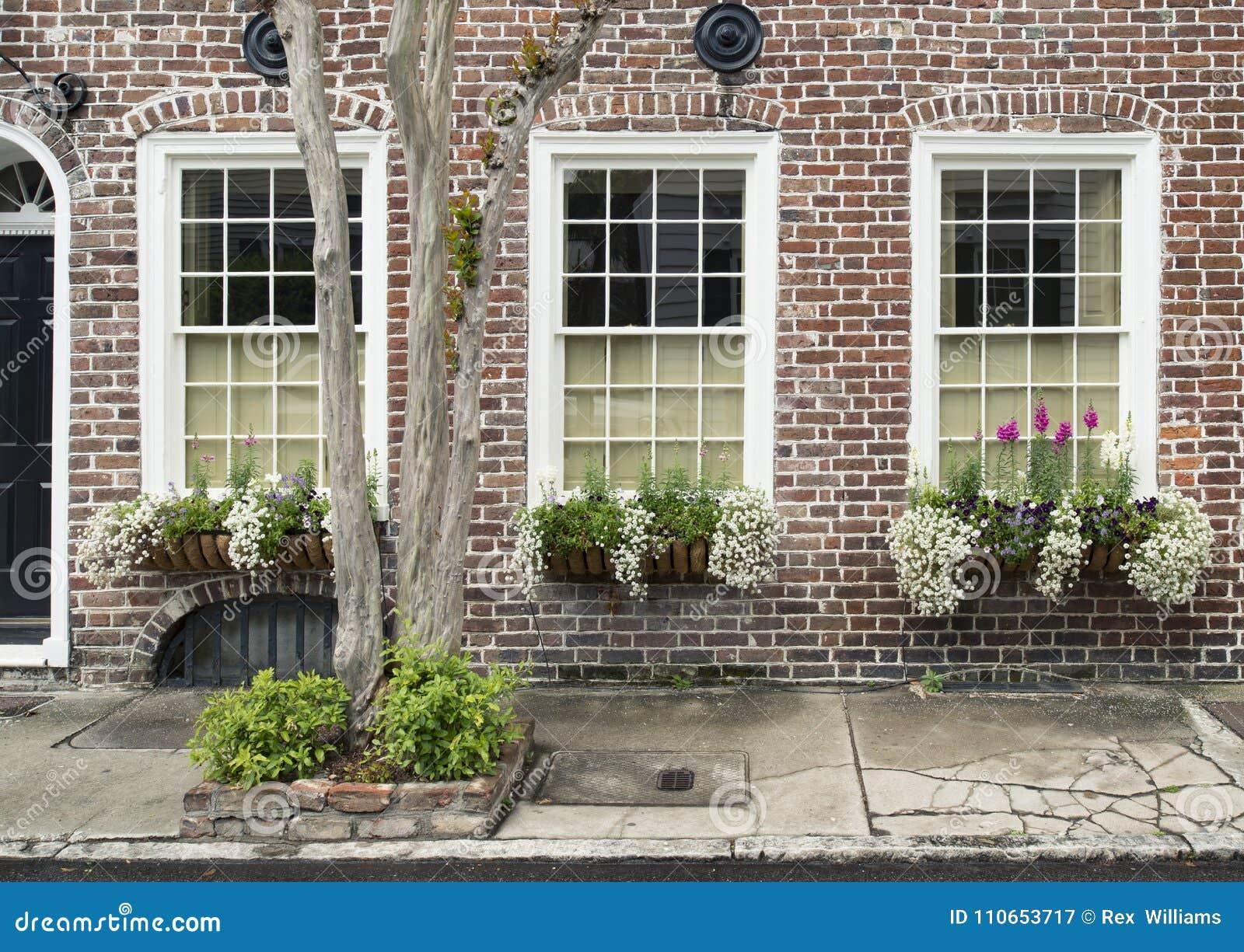 Windows和窗槛花箱大农场主显示装饰物提高建筑学