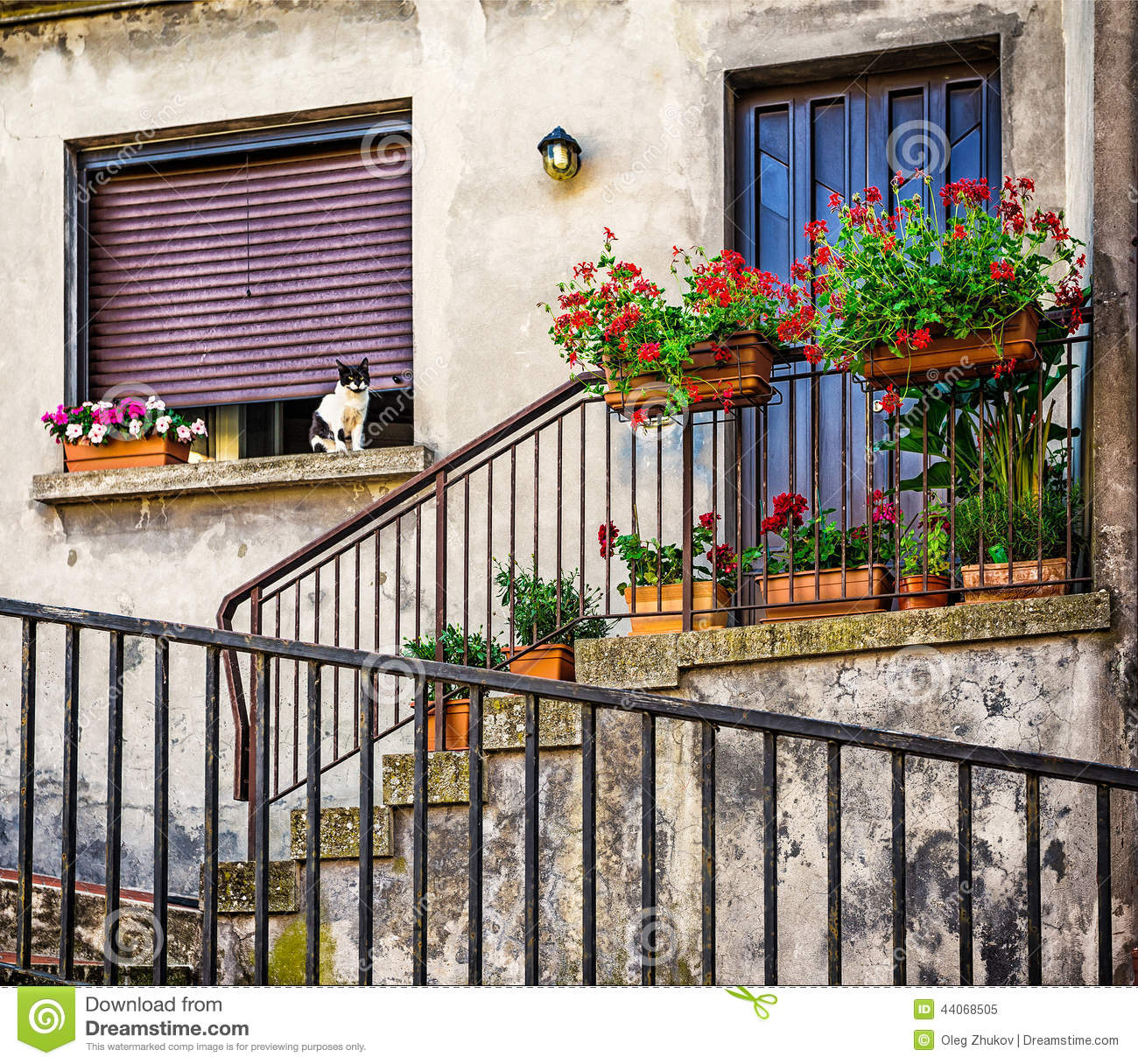 Windows and doors in an old house decorated with flower stock photo image 44068505 - How to use old doors and windows ...