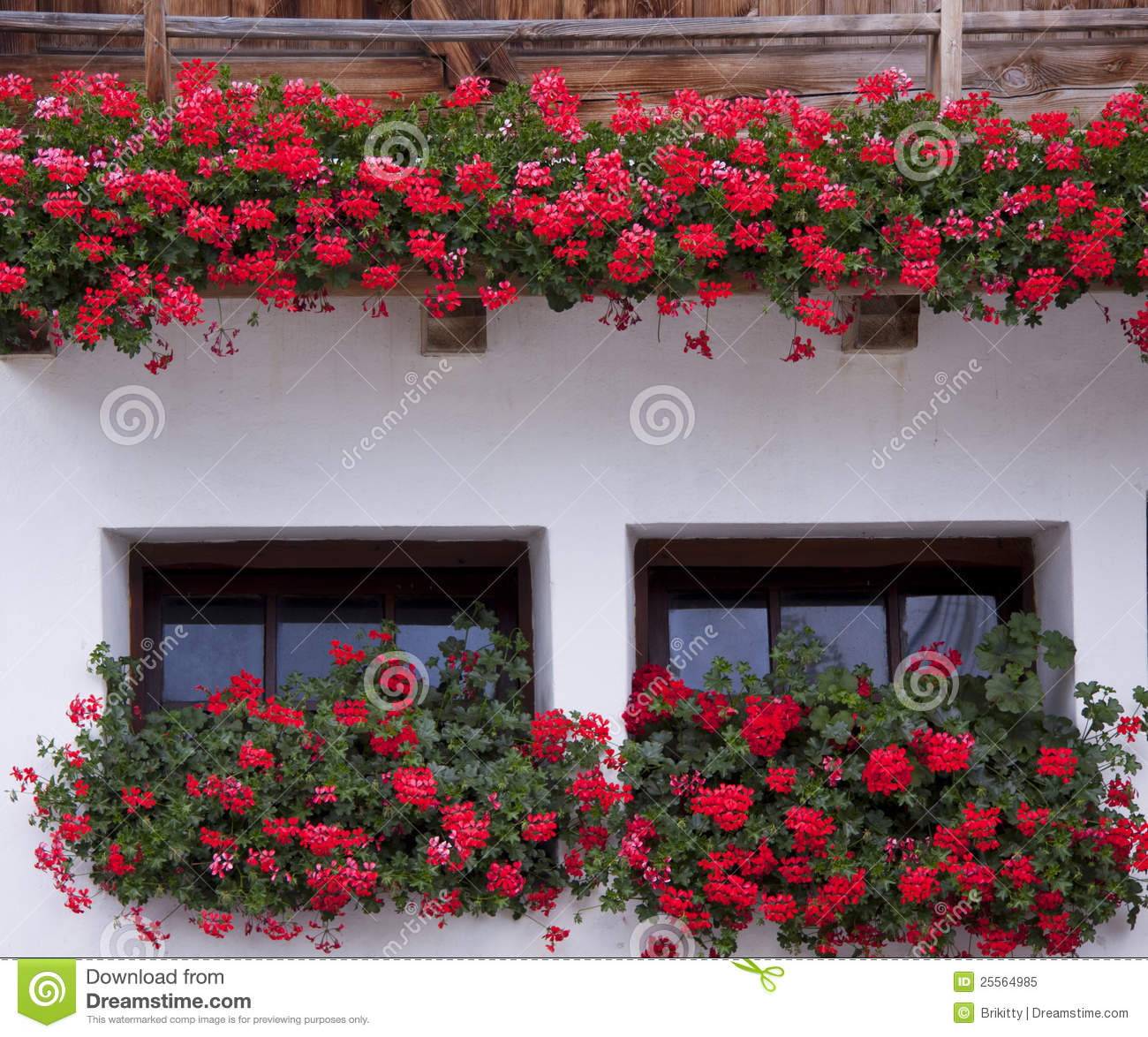 Windows The House With Flowers Royalty Free Stock Image