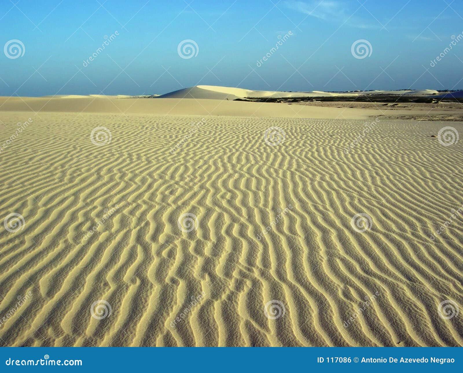 Windsand