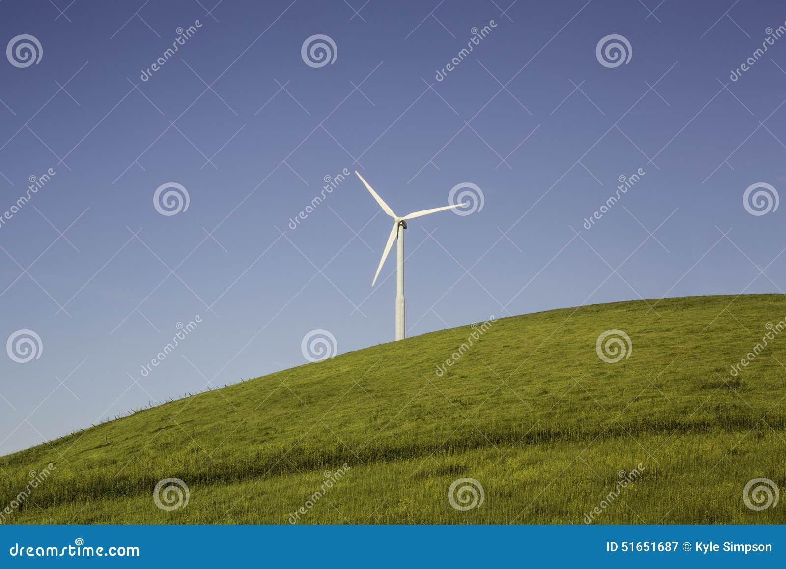 Windturbinen auf dem grünen Gebiet