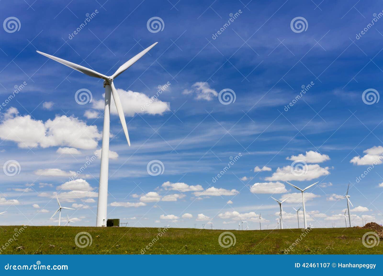 Windturbinen, gelbes Feld
