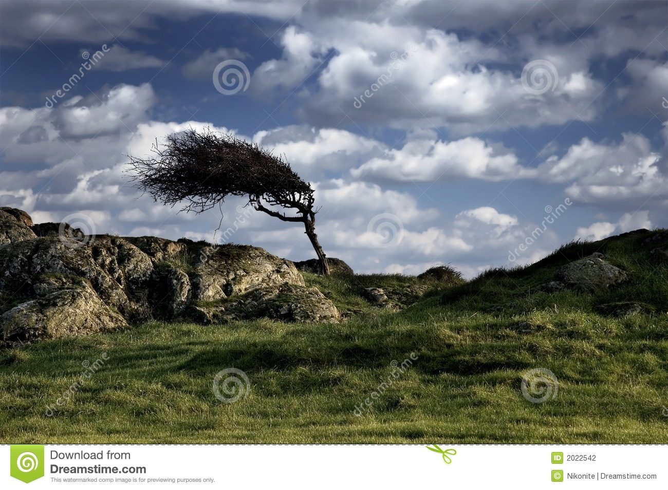 Green Background Design Wallpaper Windy landscape with s...