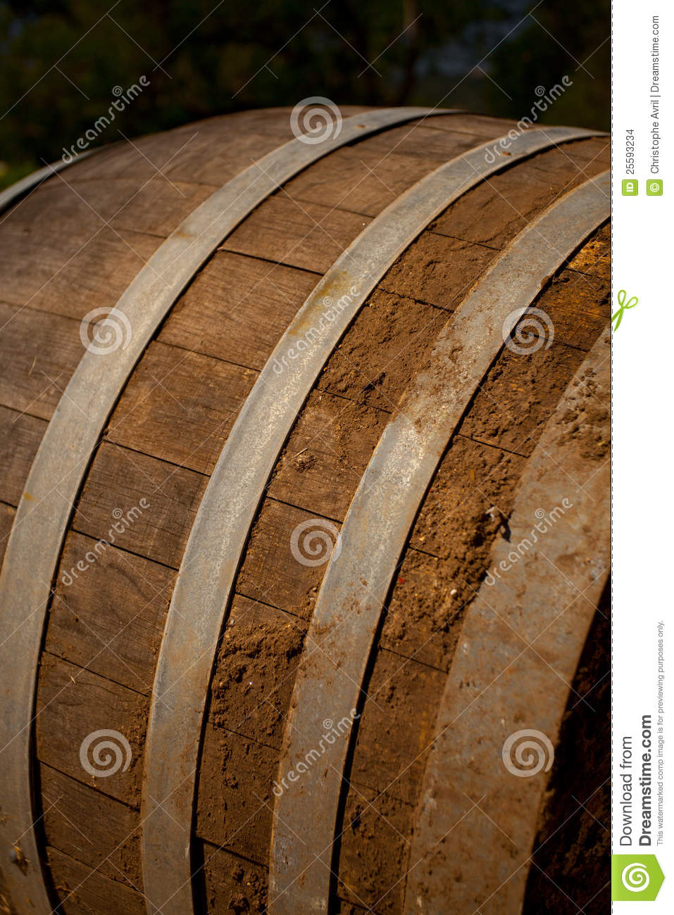 - wine-barrel-cellar-25593234