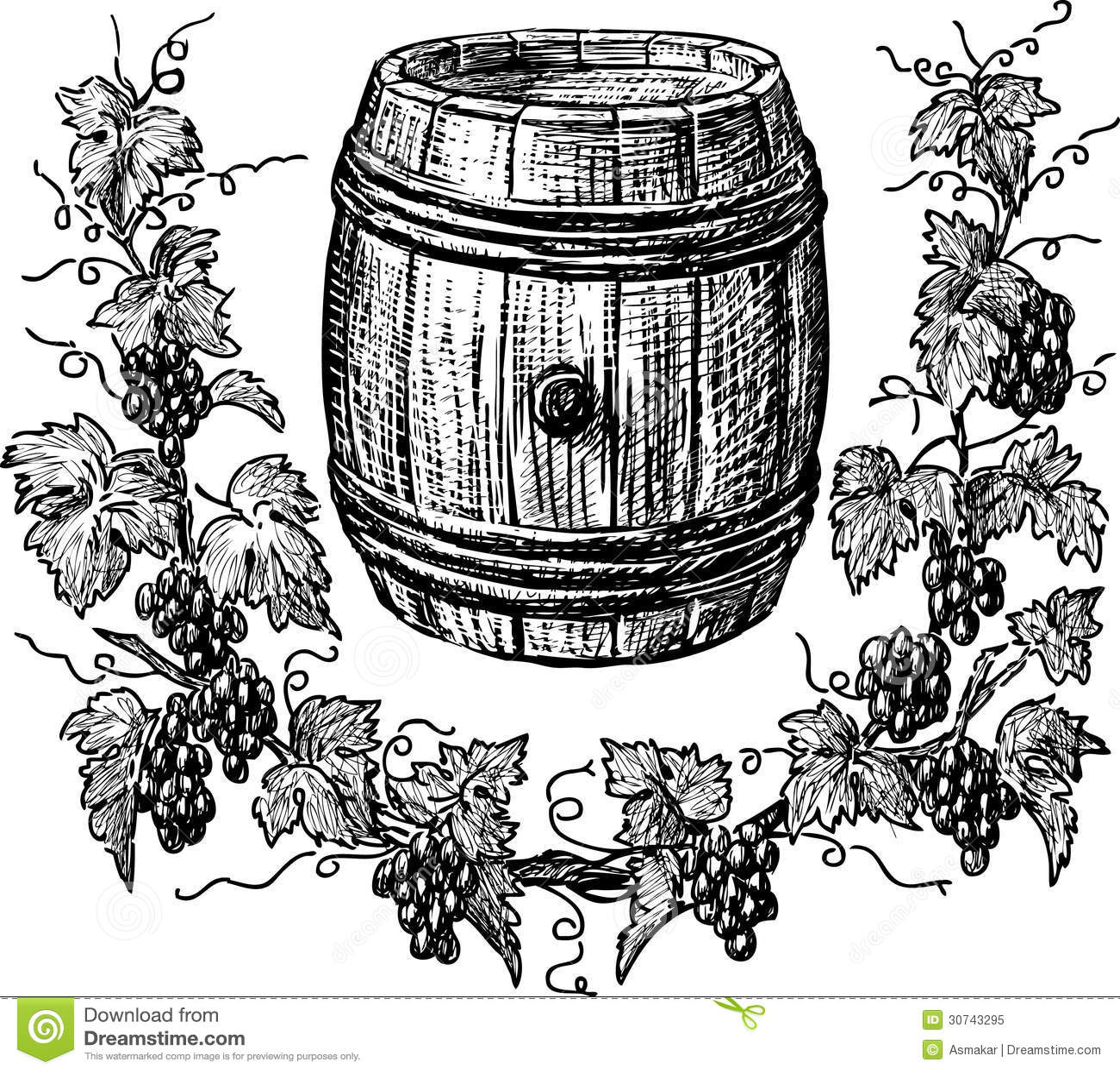 Wine cask and grapevine