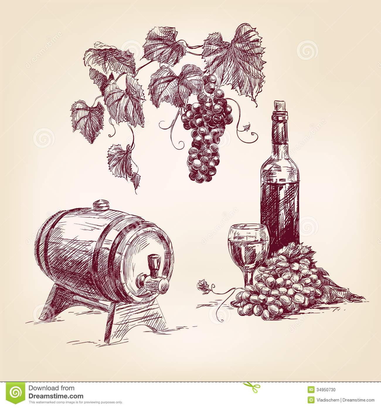 Wine Collection Hand Drawn Vector Illustration Stock Photo ...