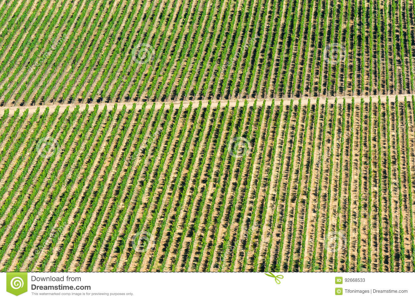 Wine crops