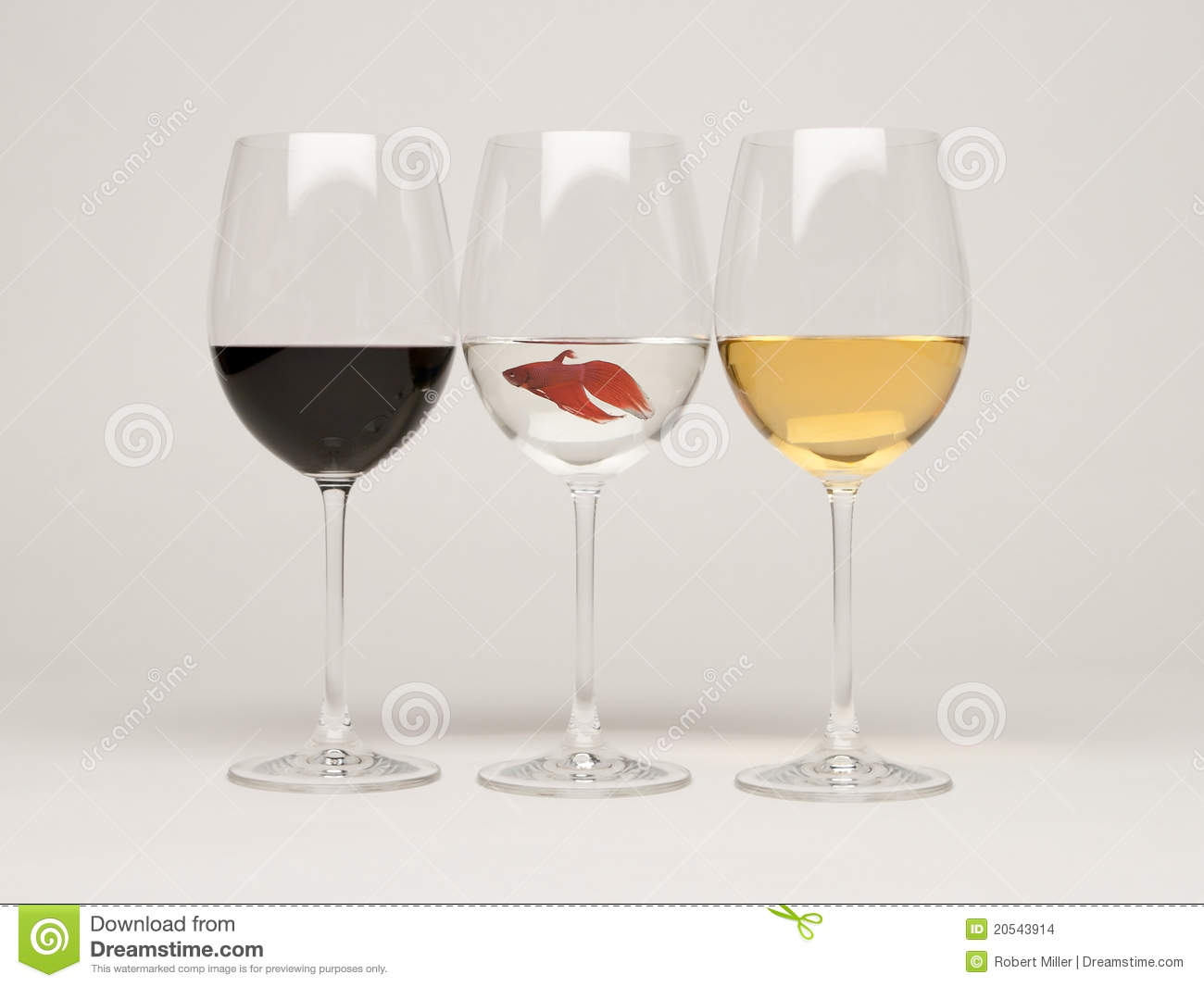Wine glasses with a fish stock images image 20543914 for Wine with fish