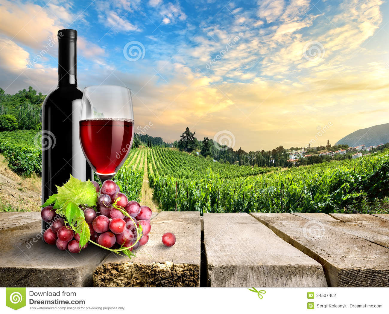 Wine With Grape And Vineyard Stock Photo - Image of still ...