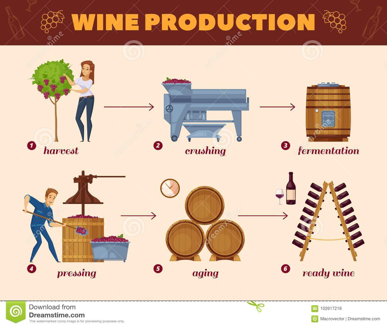 Wine Production Process Cartoon Flowchart