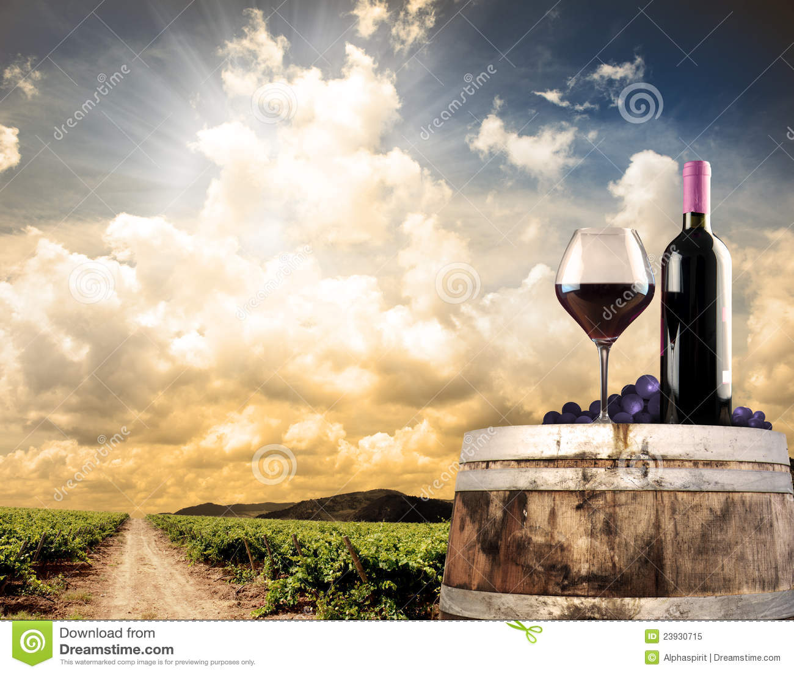 Wine still life against vineyard