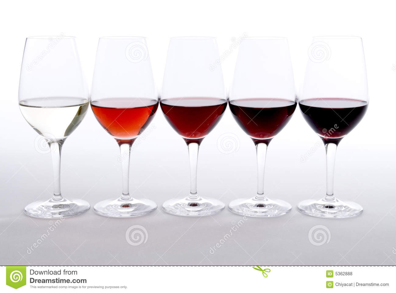 What Do You Need to Start a Wine Tasting Business?
