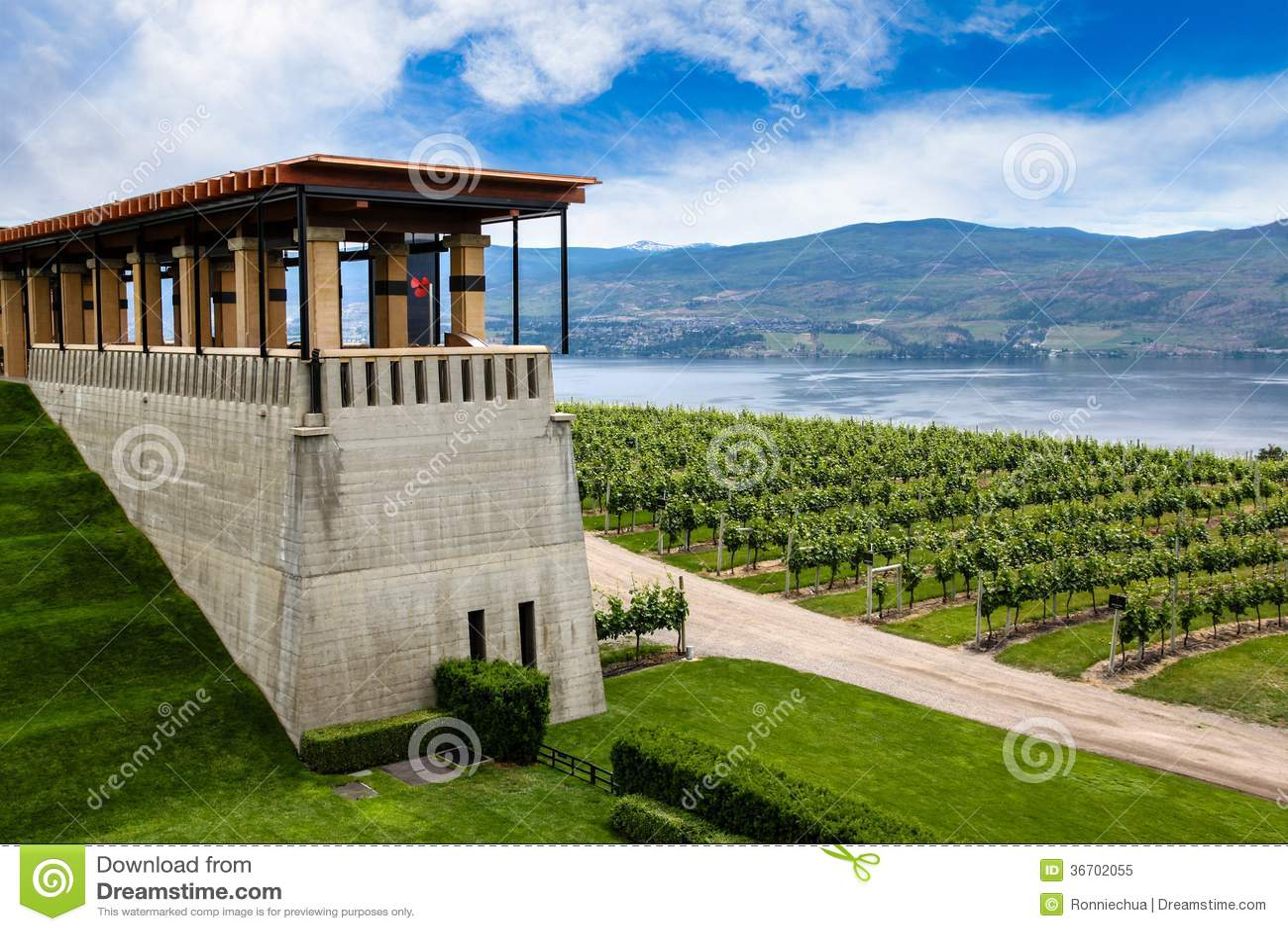 Winery vineyard in kelowna british columbia royalty free for Terrace canada