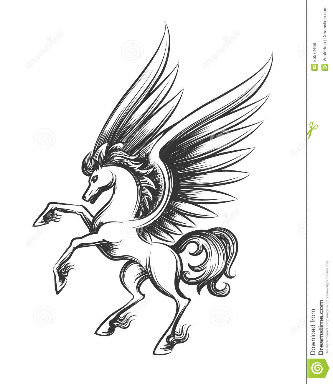 Winged Horse Engraving Illustration Stock Vector Illustration Of Isolated Decoration 86572469