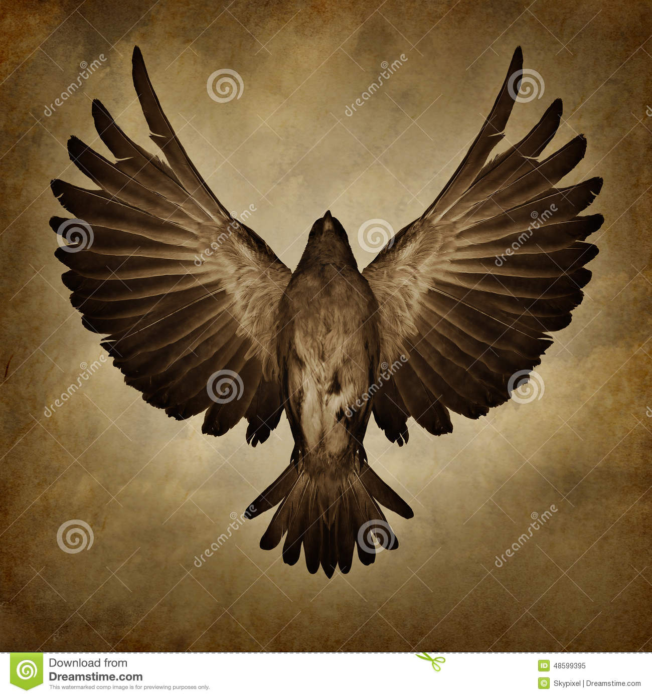 ... symbol as a bird with open spread feathers flying upward to success