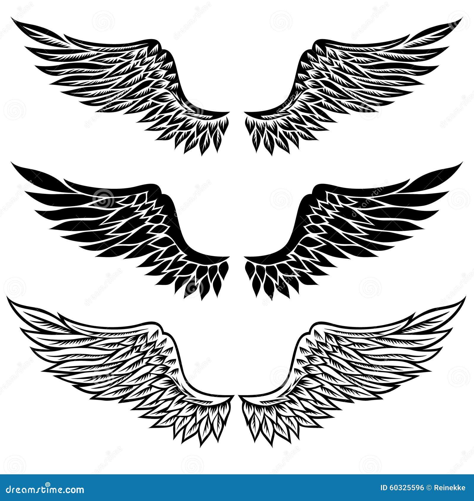 Image Result For Eagle Audio