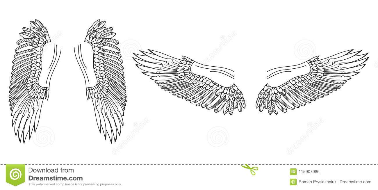 Angel Wings Sketch Set Hand Drawn Collection