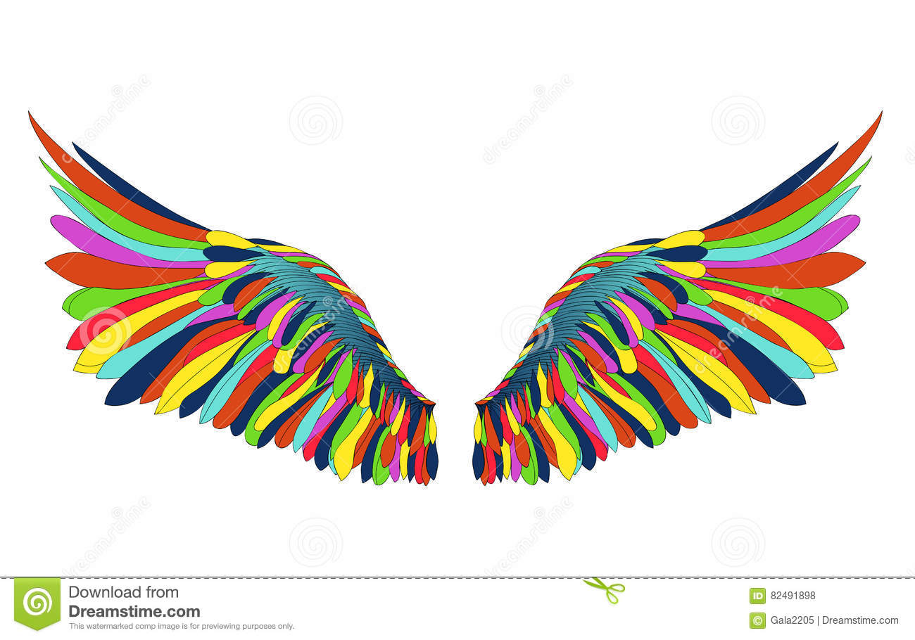 wings vector illustration on white background colorfull rainbow