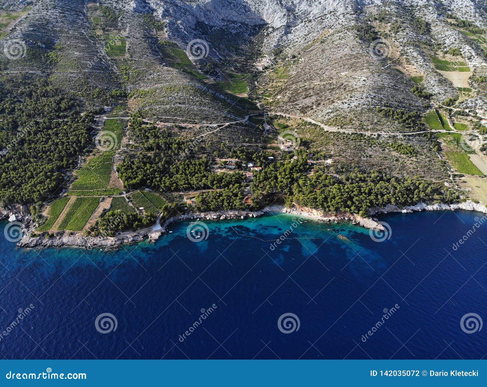 Winnicy na souths stronie wyspa Hvar, Chorwacja
