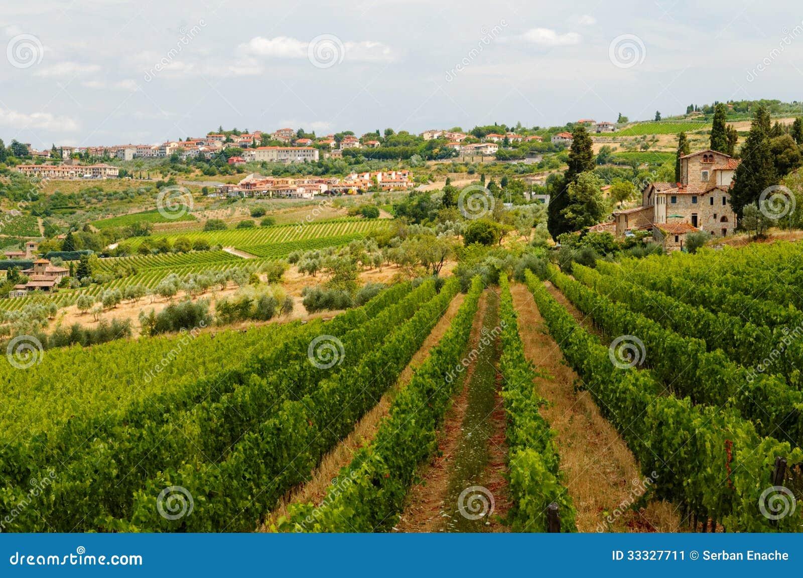 Winnicy w Tuscany
