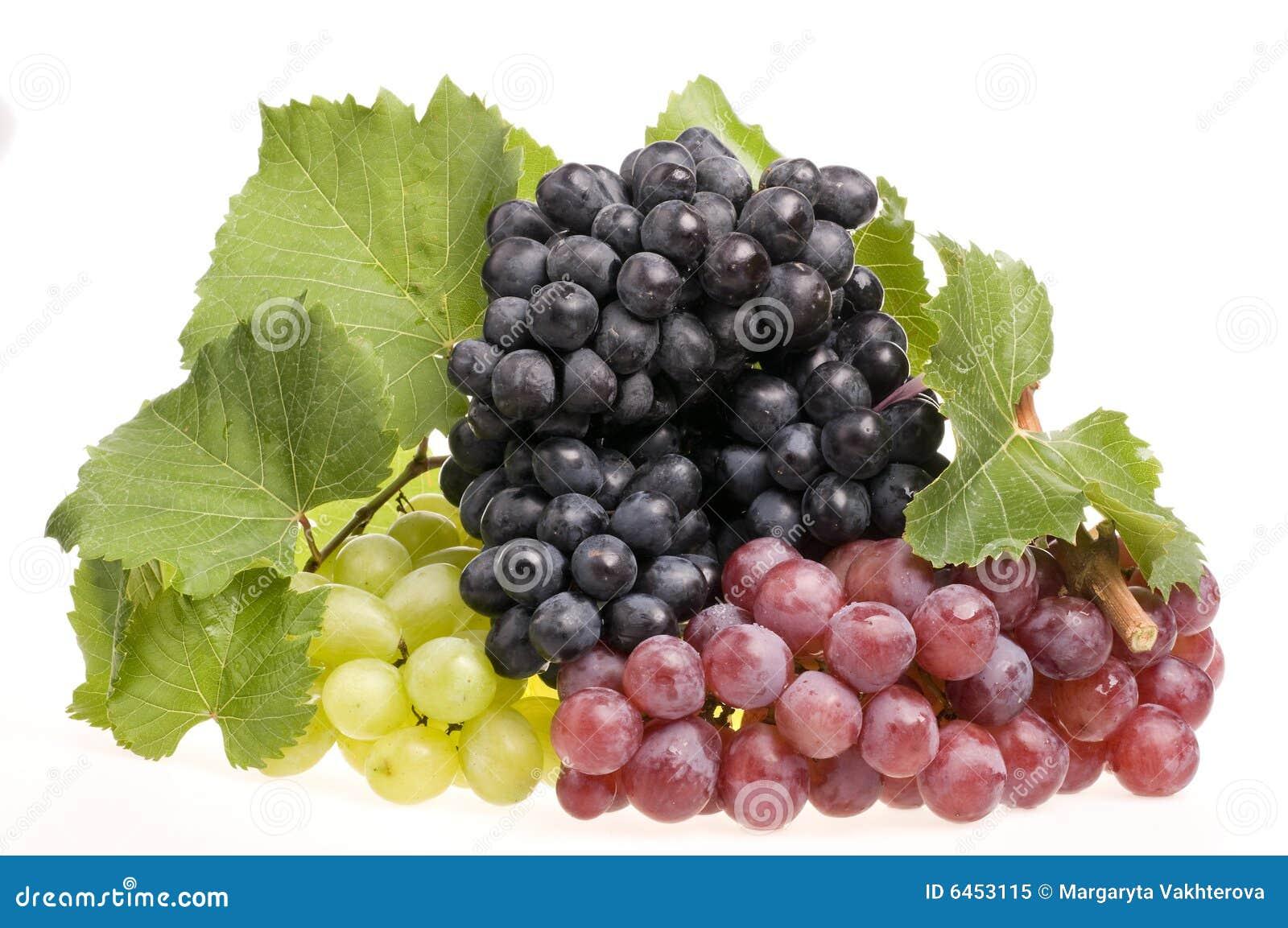 Winogrona na białe jedzenie