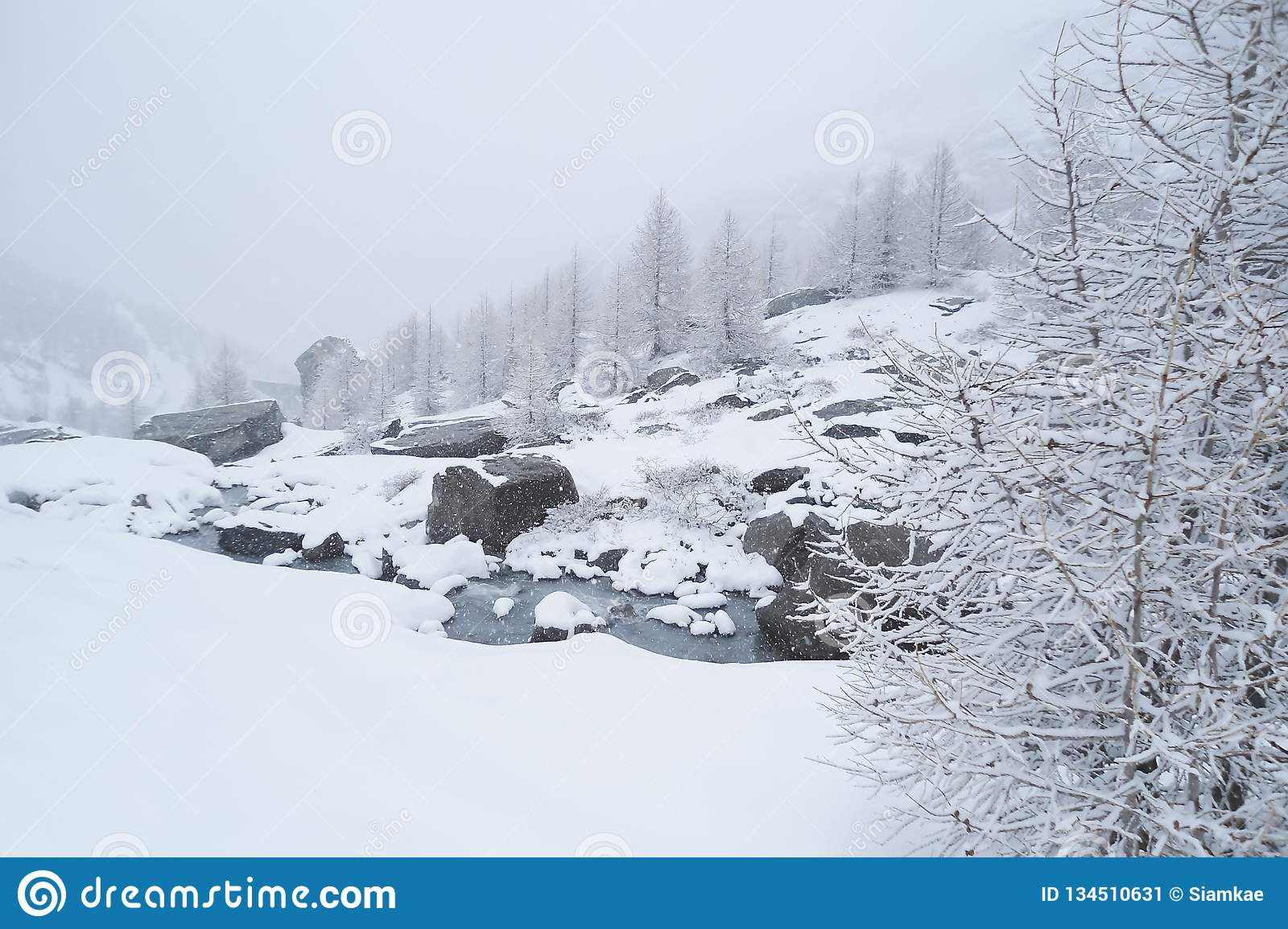 winter alpine landscape with a mountain stream bubbling over rocks
