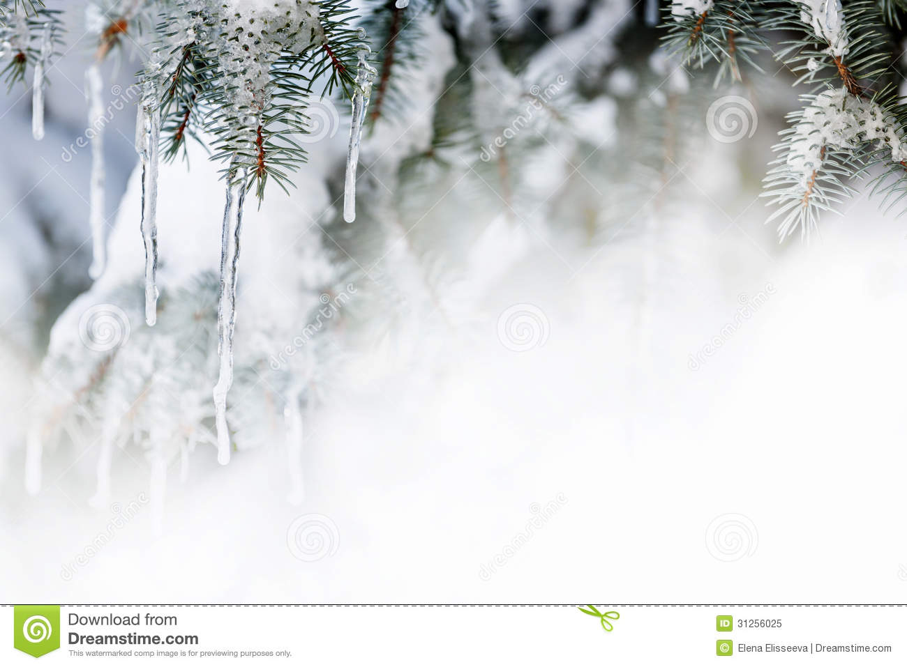 Winter Background With Icicles On Fir Tree Stock Image - Image of ...