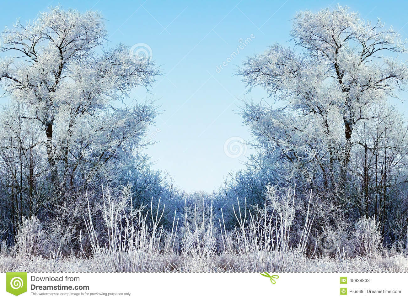 Nature Images 2mb: Winter Background With Icy Branches In The Foreground