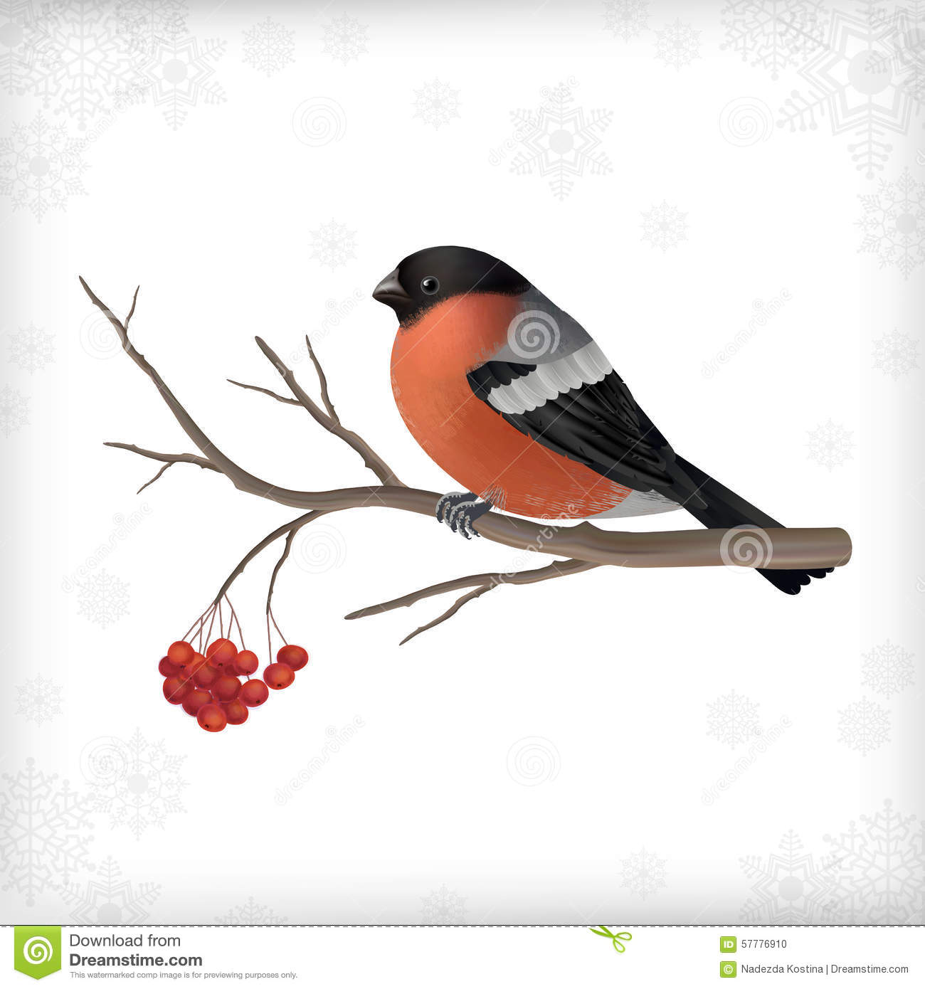 winter bird bullfinch tree branches stock vector