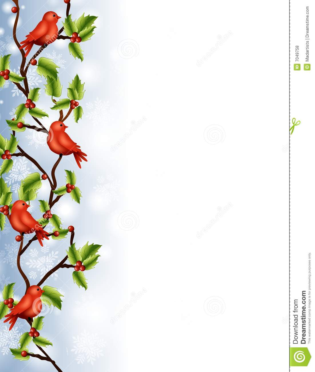 ... featuring a group of red birds sitting on a holly branch tree border