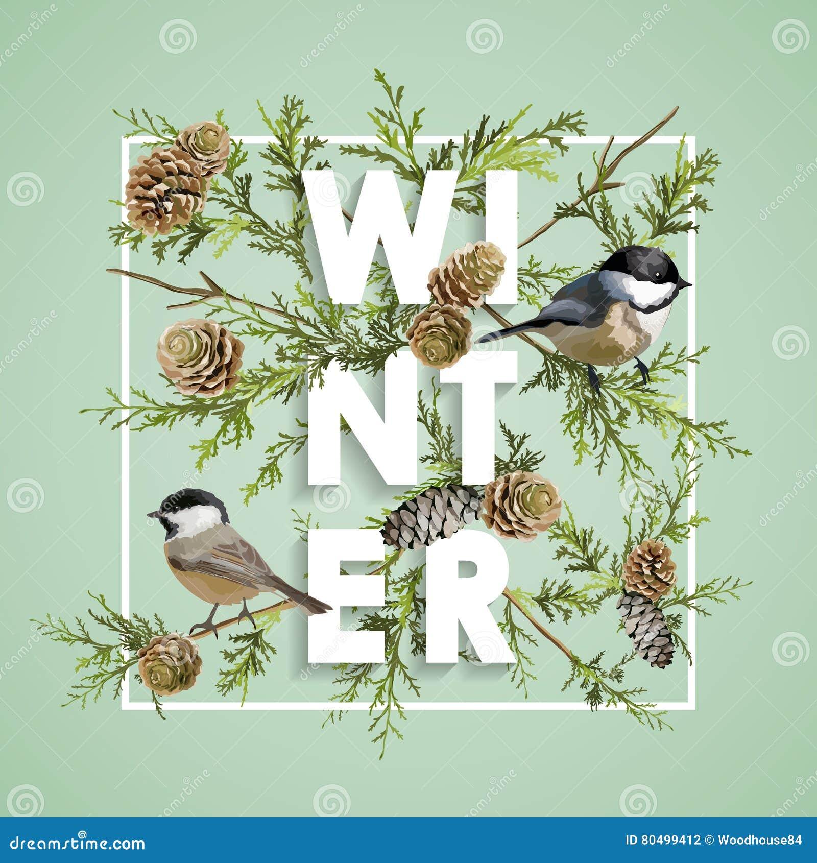 Winter Christmas Design in Vector. Winter Birds with Pines