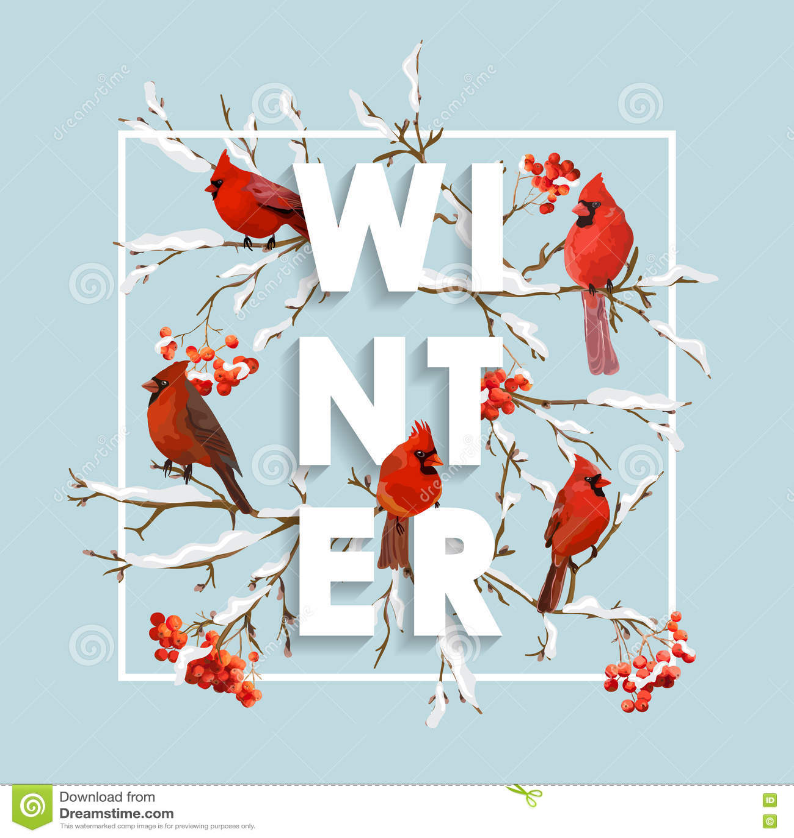 Winter Christmas Design in Vector. Winter Birds with Rowan Berries