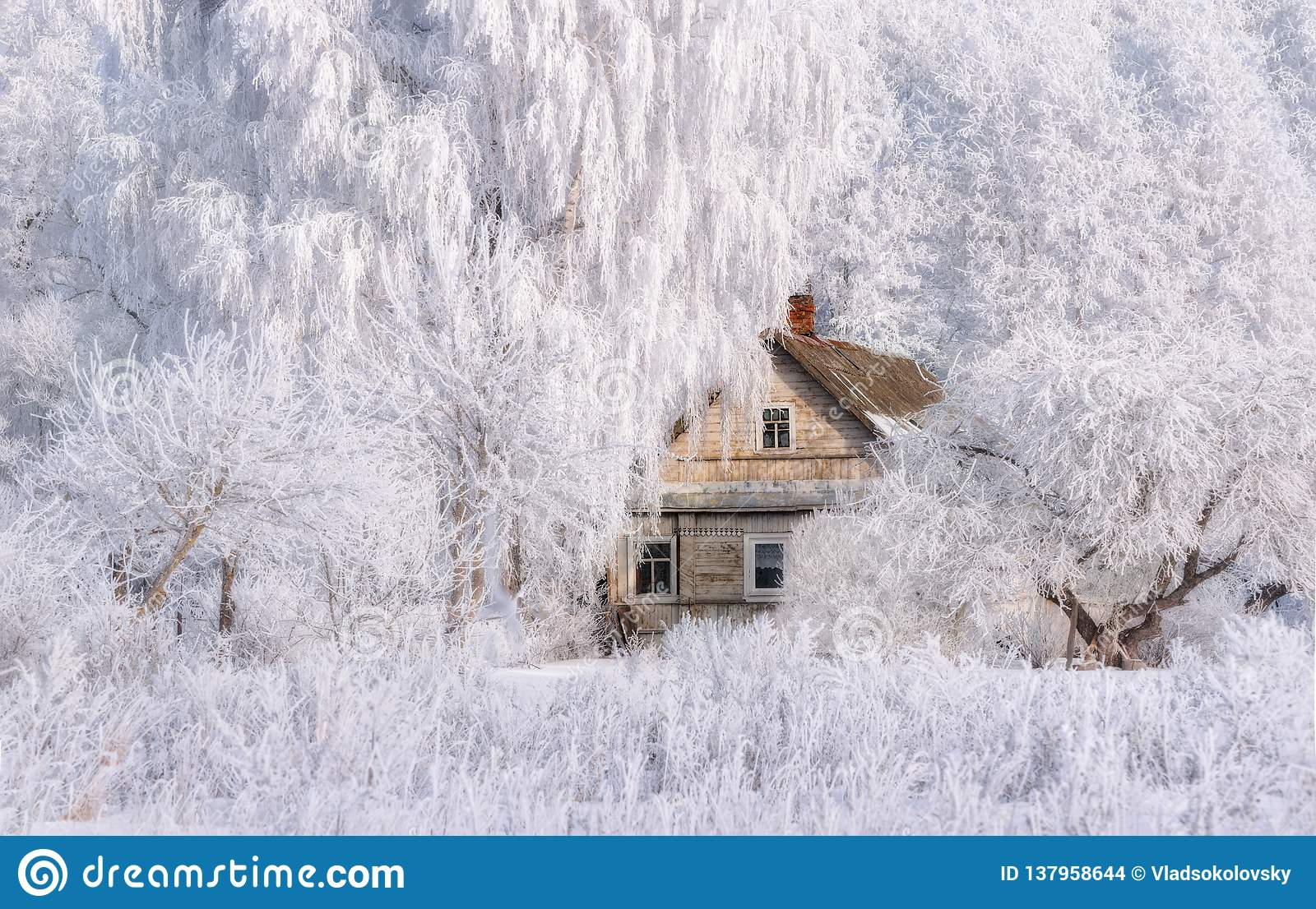 Retro Winter House.Christmas Landscape In Pink Tones With Old Fairy Tale House, Surrounded By Trees In Hoarfrost. Rural Landscape