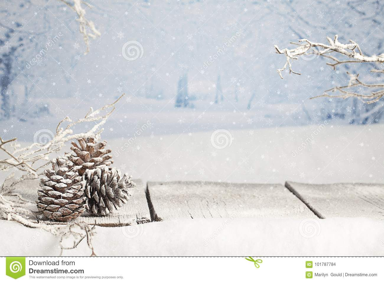 Winter Christmas Scene