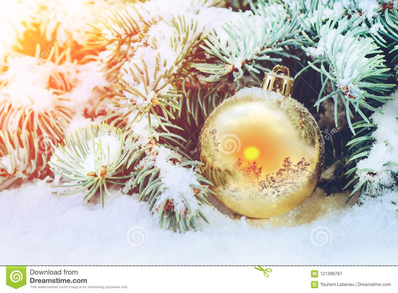 Winter concept, Christmas ball on a spruce branch in the snow with a reflection of the winter landscape