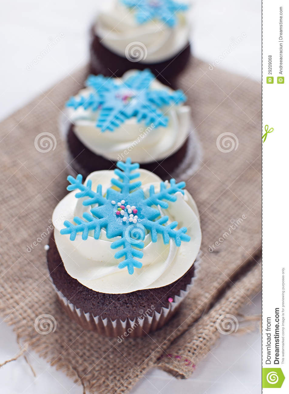 Winter Cupcakes With Fondant Flower Decorations Royalty