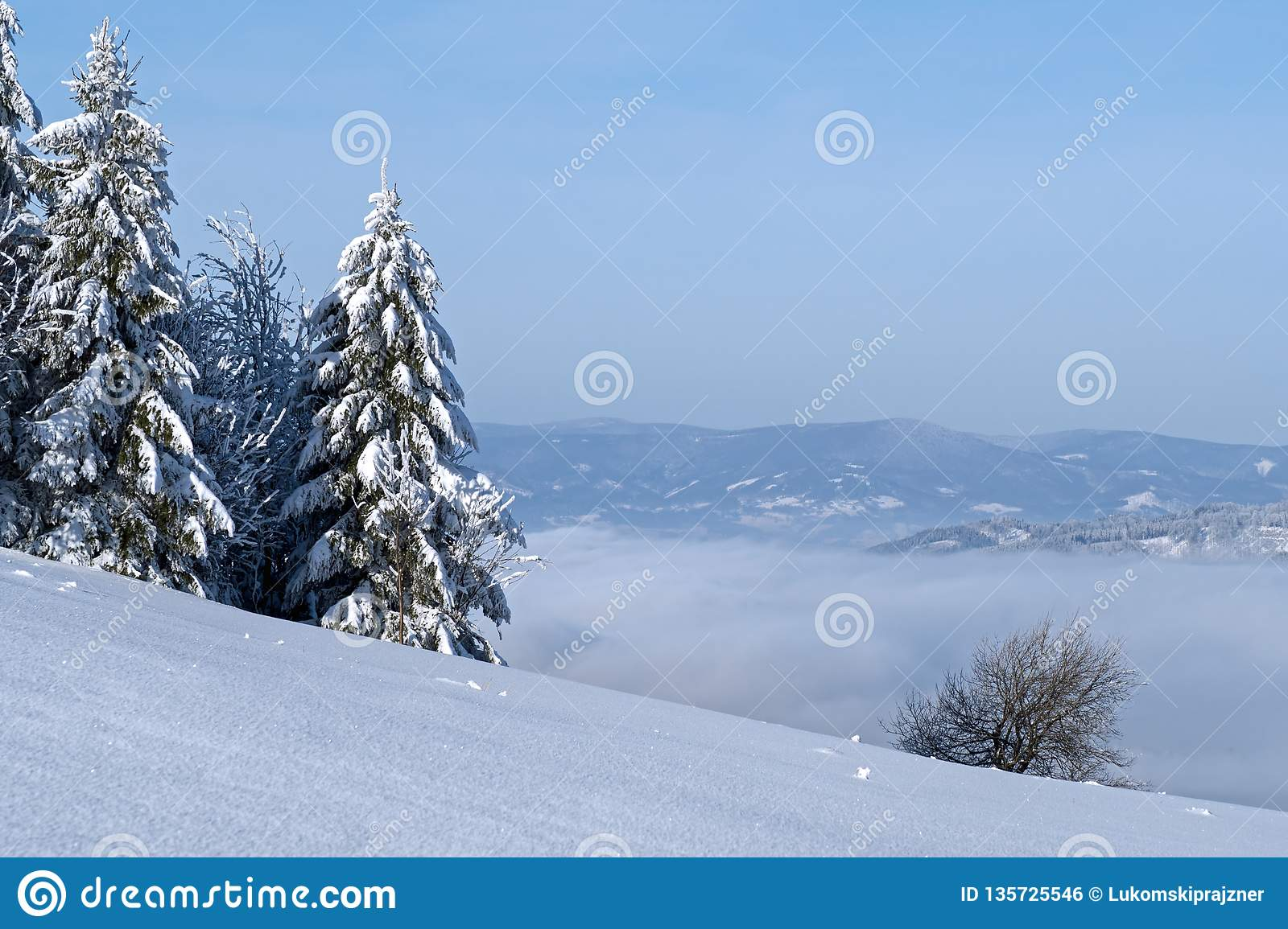 Winter in der Landschaft