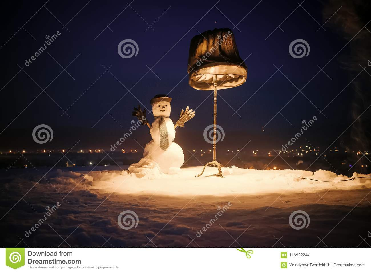 Christmas Evening Party.Winter Evening Party Stock Photo Image Of January 116922244