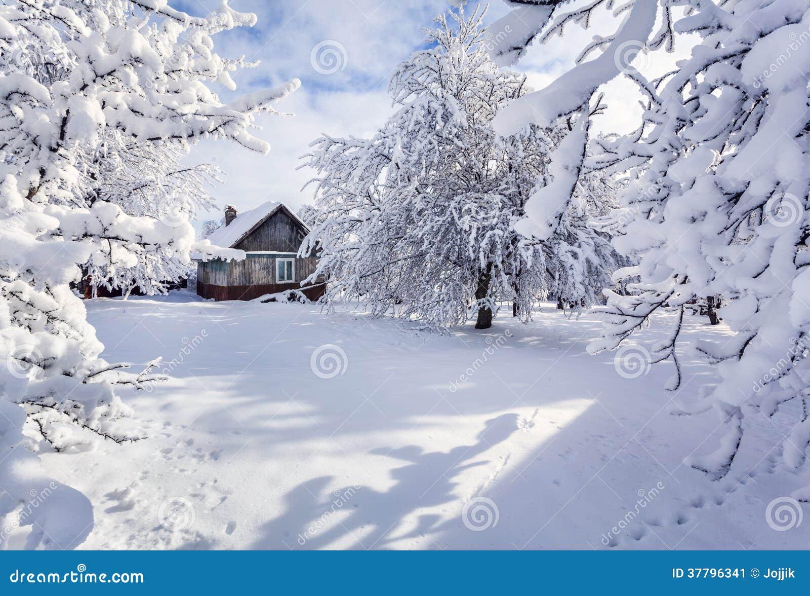 Winter Fairytale Heavy Snowfall Stock Image Image 37796341